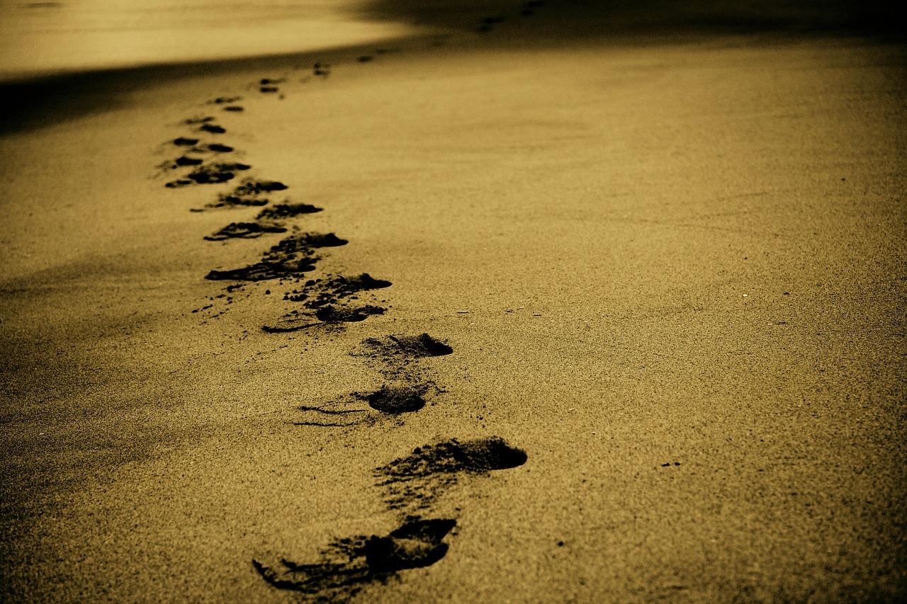 El camino se hace al andar